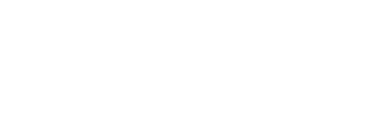 Network Architectural logo